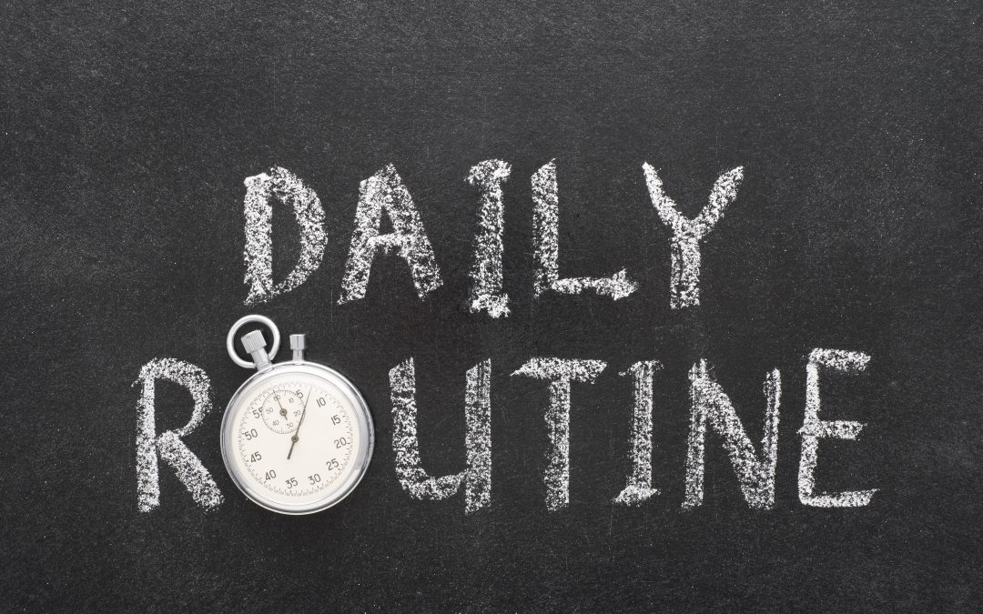 Survival Mode or Thriving Mode? Daily Habits for Flourishing